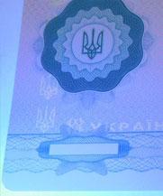 Диплом - свечение УФ (Луганск)